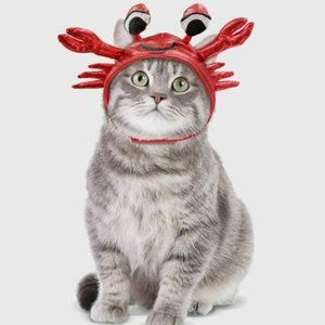 Set of Two Cat Costume Hats - Fish Taco & Crab